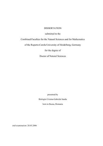dissertation knockout maus